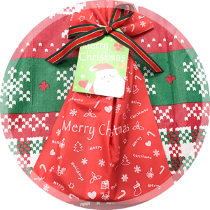 サンタさんからプレゼントが!